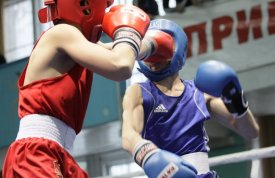 The Yamal boxers took two gold on interregional tournament in Kurgan