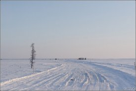 Frosts on Yamal open new opportunities for the winter road